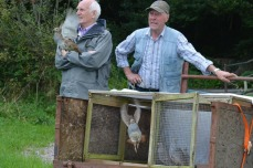 George (left) founded the sanctuary and still keeps a close eye on things (unpaid)